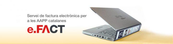 Factura electrònica (EFACT)